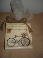 Ποδήλατο ρετρό εποχής σε καδράκι