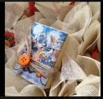 Ντόναλντ-Γκούφη-Μίκυ σαπουνάκι λαδιού